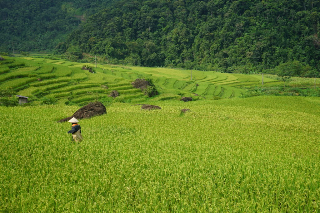 Pu Luong in September - private Vietnam tour