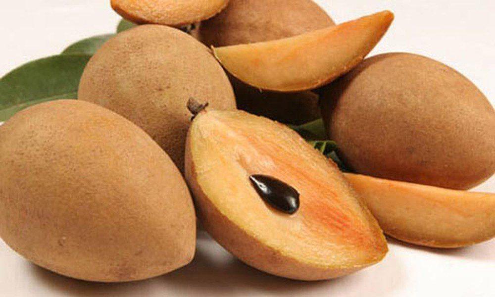Vietnam Sapodilla fresh fruit