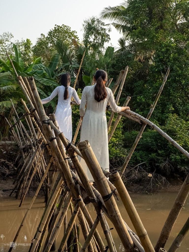 monkey bridge in Vietnam