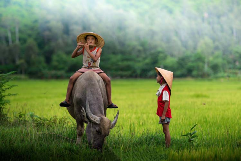 15 things about Vietnam you must know