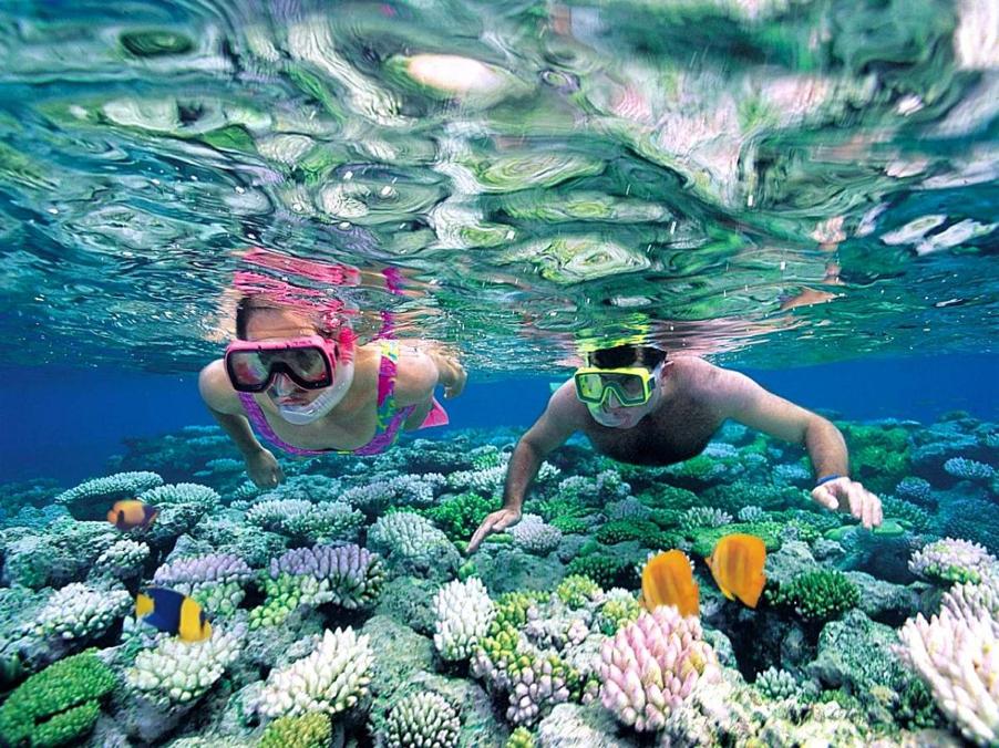 Diving in Nha Trang