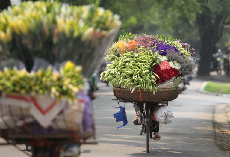 8 interesting facts about Hanoi