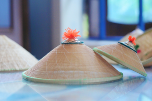 The horse-hat-making handicraft has existed for over 300 years in Binh Dinh